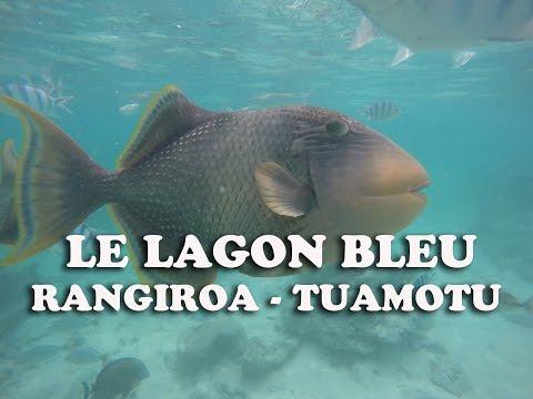 Le lagon bleu - Rangiroa Tuamotus