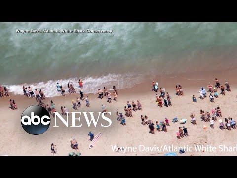 Massachusetts beach closed