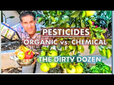 Part 2 of 3 | SAVE THE WORLD WITH YOUR HOME GARDEN | Chemical vs Organic Pesticides | Dirty Dozen