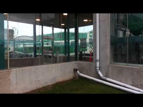 GO cab car 202 & MPI MP40PH-3C 650 Bronte GO Station November 25 2012