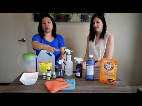 Welcome to Wellness Wednesdays  Green Cleaning Part 1 with Elsie Kelly