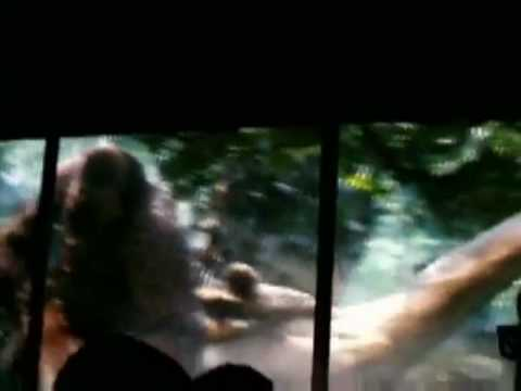 New King Kong ride 3-D in Universal Studios.
