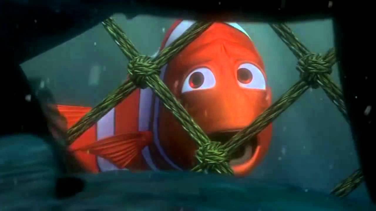 Chú cá Nemo lãnh đạo đàn cá thoát khỏi lưới của tàu