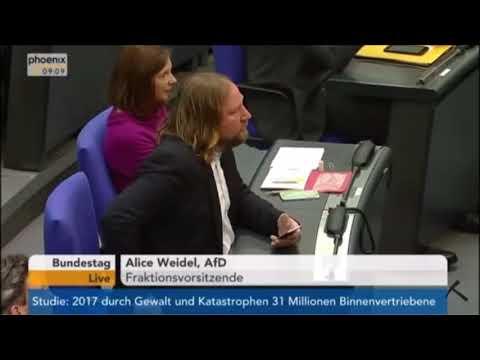 Alice Weidel (AfD) bezeichnet Anton Hofreiter (Die Grünen) als Schreihals