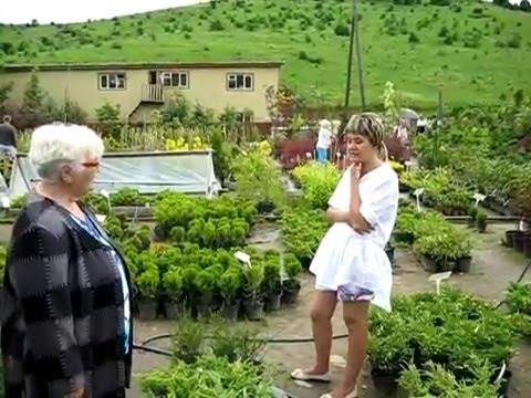Село Алтайское, поля «Биолита»