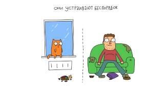 Что общего у котов и парней