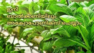 Kerala Aquaponics For  Beginners  Part 1