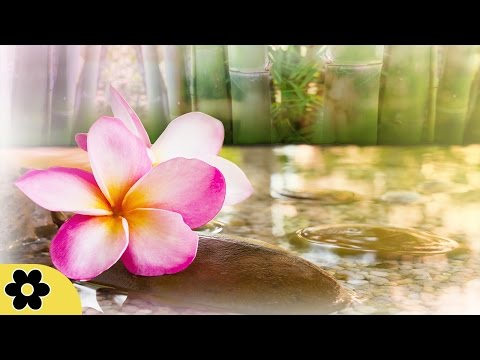 Relaxing Zen Music, Positive Energy Music, Relaxing Music, Slow Music, ✿3062C