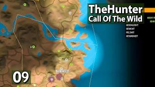 Wildschweine ► The Hunter Call of The Wild #9