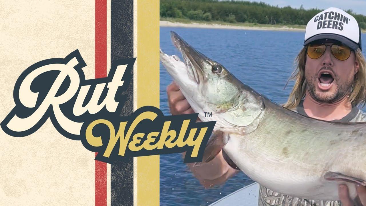 Rut Weekly - Musky