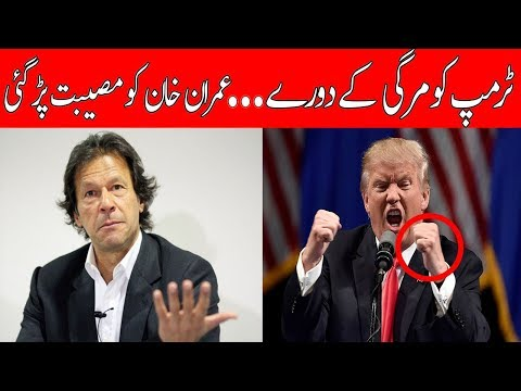 Comparison between Donald trump and Imran khan || can Imran lead Pakistan successfully or not??