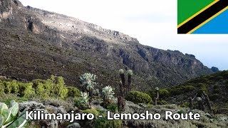 Kilimanjaro Lemosho Route (most scenic route) with packing list
