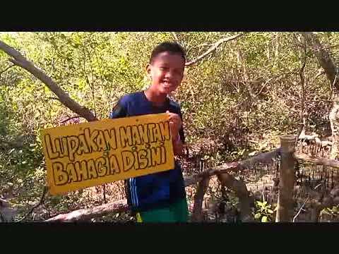 kondisi-ekowisata-hutan-mangrove/bakau-di-gresik-pulau-bawean