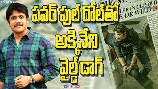 Nagarjuna Upcoming Movie Update | Wild Dog | నాగార్జున న్యూ మూవీ | Color Frames