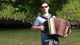 Despacito Harmonika - Michael Sattler
