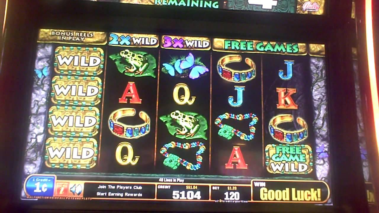 go wild casino promotion code