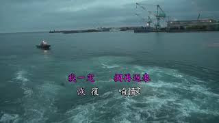 吳晉淮 我是漂浪的海鳥