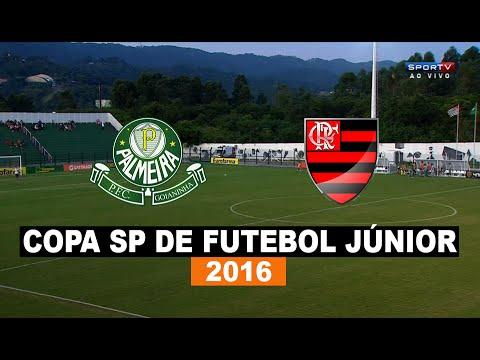 Gols - Palmeira-RN 1 x 5 Flamengo - Copa SP De Futebol Júnior - 05/01/2016 - Futebol HD