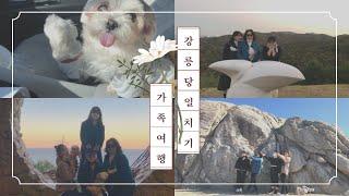 강릉 당일치기 가족여행 : 강아지와 함께하는 여행, 국…