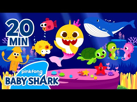 baby-shark-and-more-|-baby-shark-and-friends-|-+compilation-|-baby-shark-official