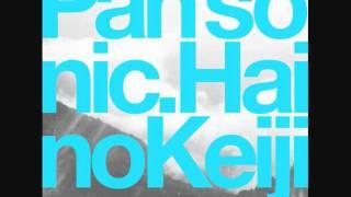 Pan Sonic & Keiji Haino - So Many Things I Still Have Yet To Say