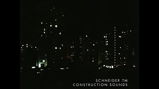 Schneider TM - Bimanual Complexity