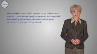 Русский язык Правописание гласных и согласных в приставках