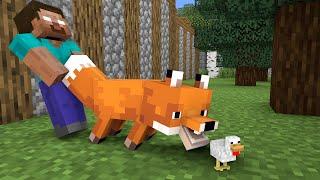 Monster School : Chicken Baby Friend - Cute Story - Minecraft Animation