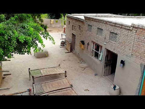 Punjab Village Houses & Beautiful Scenes | Rural Life In Pakistan