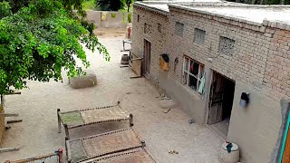 Punjab Village Houses & Beautiful Scenes | Rural Life In Pakistan