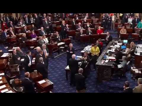 curb your mccain vote
