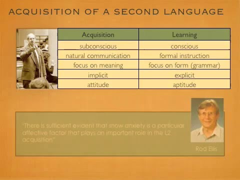 Emotional Intelligence and Second Language Acquisition