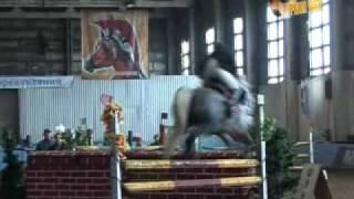 Программа Плэй Офф - сюжет конный спорт