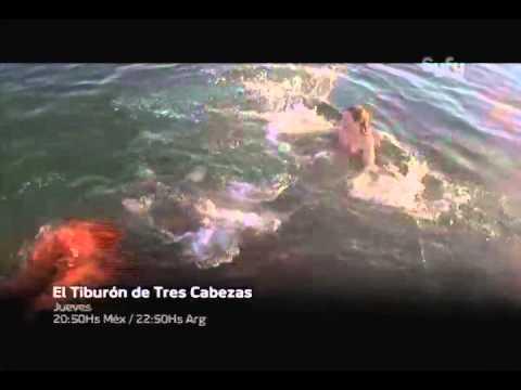 El Tiburón de tres cabezas