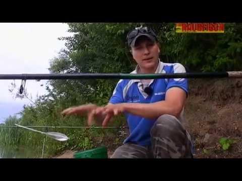 оснастка для ловли судака на мертвую рыбку