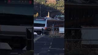 e233系0番台 青梅線普通奥多摩行 御嶽駅発車
