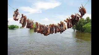 Làng nghề làm khô cá lóc ở xã Phú Thọ, huyện Tam Nông, tỉnh Đồng Tháp