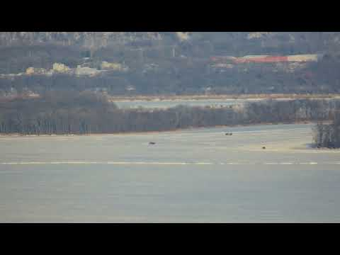 Great Spirit Bluff Falcons - Cliff View Cam 01-17-2018 13:37:59 - 14:37:59