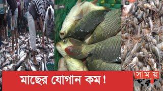 মাছের বাজারে উপচে পড়া ভিড় | Fish Market | Somoy TV