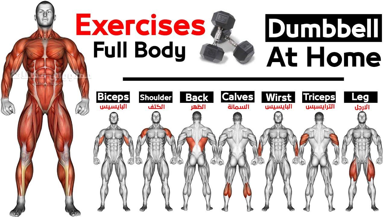 Download Full Body HOME Dumbbell  WORKOUT (squats, chest ,triceps, biceps , back, shoulder, wrist, Calves  )