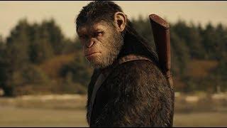 Факты о фильме Планета обезьян Война. Смотреть Планета обезьян Война. Планета обезьян Война фильм.