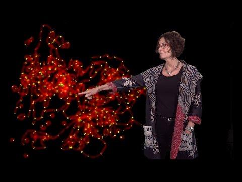 Titia de Lange (Rockefeller U.) 2: How telomeres solve the end-protection problem