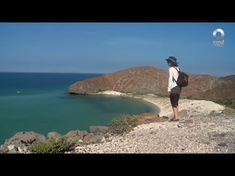 Detrás de un click - Isla Coronado: Baja California Sur (30/08/2017)