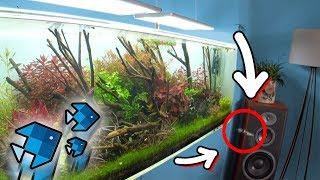 Fisch springt live aus dem Aquarium! 😱