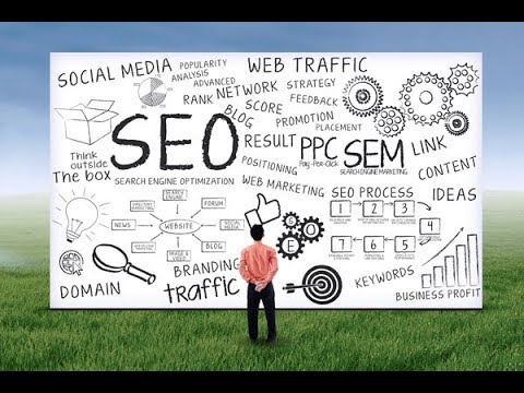 SEO Dunedin FL Digital Marketing Services Coastal Clicks Traffic Page One