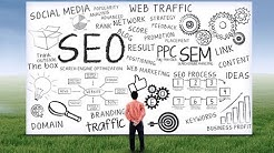 SEO Dunedin FL Digital Marketing Services Coastal Clicks Traffic Page One