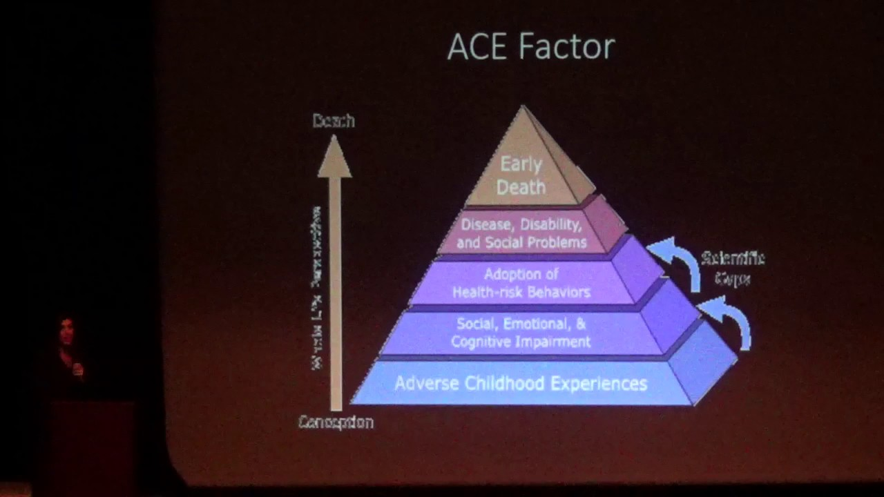 Trauma, ACES, and their impacts on your body