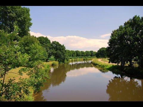 Planet Wissen - Fische, Leben in Fluss und Bach