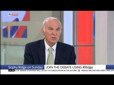 Vince Cable: we will work with Tories and Labour to protect the UK from Brexit economic damage