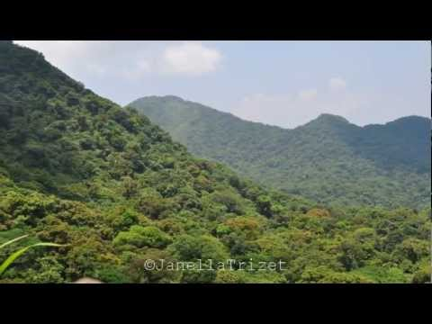 Mount Makiling: Nature at its Finest [HQ]